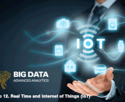 Módulo 12. Real Time and Internet of Things (IoT)
